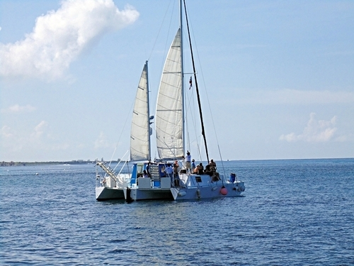 Cozumel catamaran snorkel Excursion Reviews