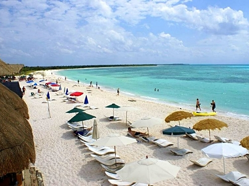 Cozumel crocodile lagoon Trip Reservations