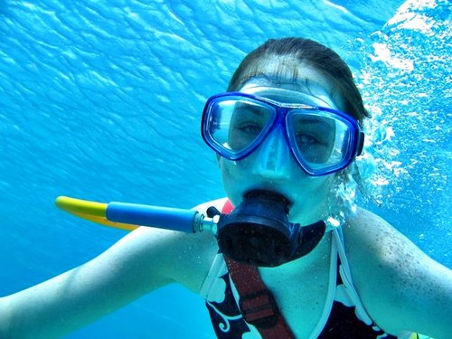 Cozumel Island SNUBA Dive and Snorkel Tour Booking Reviews