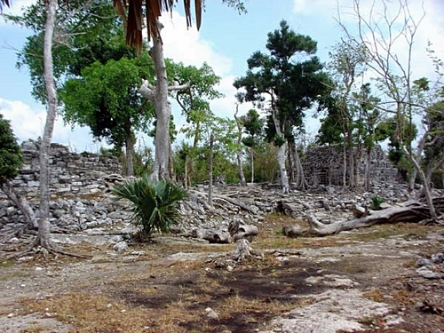 Cozumel Mayan Ruins and Beach Tour Reservations