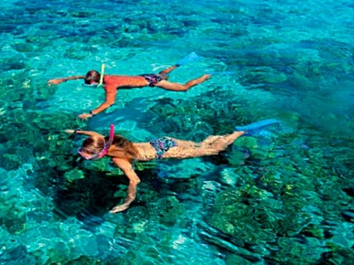 Cozumel Ultimate Island Jeep Punta Sur And Snorkel Excursion