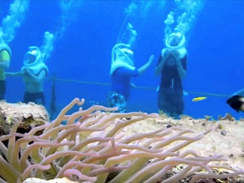 Cozumel Mexico depth of 20 feet Shore Excursion Reviews
