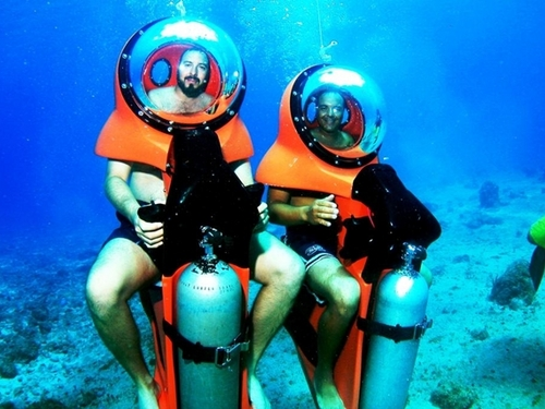 Cozumel Mexico marine life  Excursion Tickets