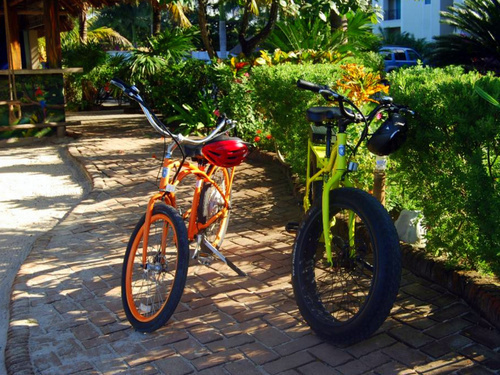 Cozumel  Mexico no pedal bicycle Trip Tickets