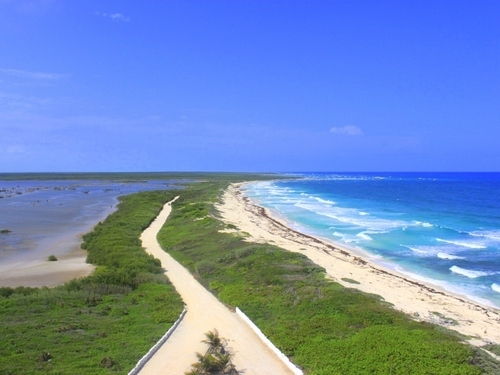 Cozumel  Mexico punta sur Excursion Reservations