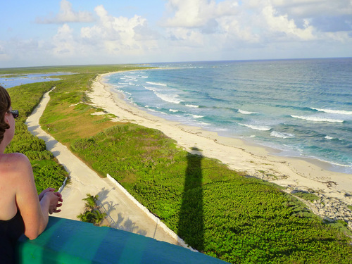 Cozumel  Mexico jeep Tour Booking