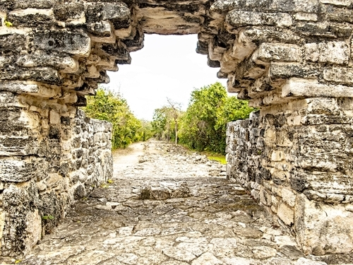 Cozumel Playa Uvas Shore Excursion Cost