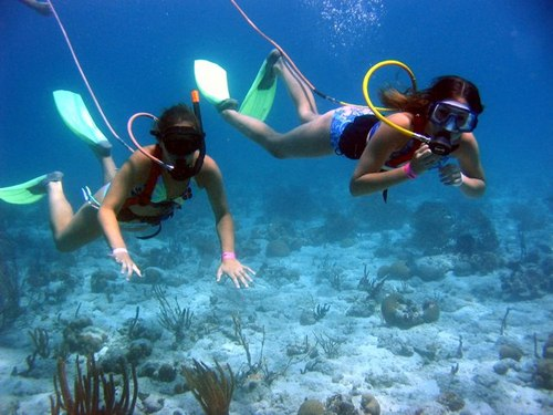 Cozumel Port SNUBA Dive and Snorkel Cruise Excursion Cost Tickets