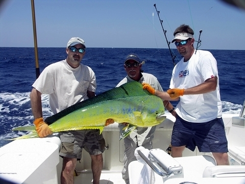 Cozumel private big game deep sea fishing yacht boat for Deep sea fishing mexico