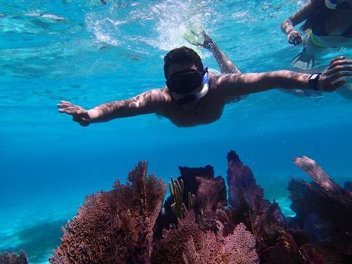 Cozumel private sunset snorkel Cruise Excursion Reviews