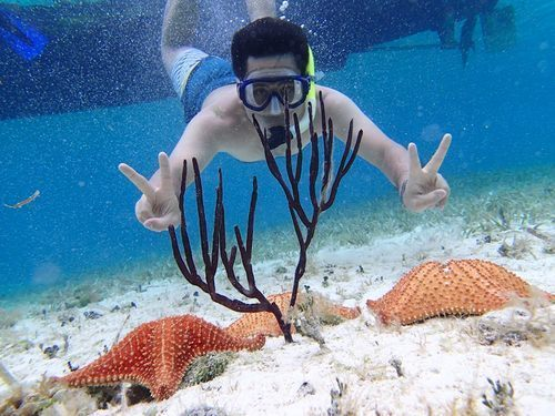 Cozumel private sunset snorkel Excursion Reviews