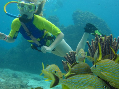 Cozumel SNUBA and Snorkeling Shore Excursion Tickets Reviews