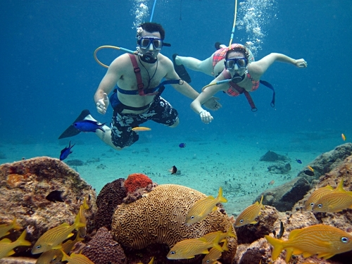 Cozumel snuba diving excursion - Dive shop mexico ...