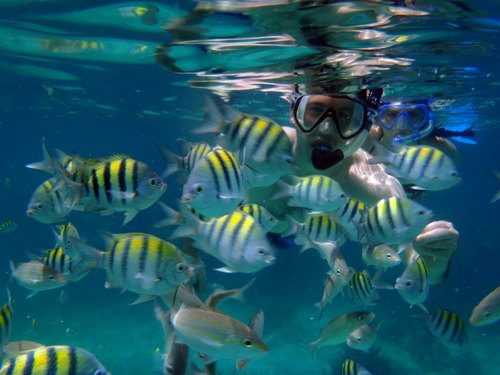 Cozumel SNUBA Excursion Cost Cost