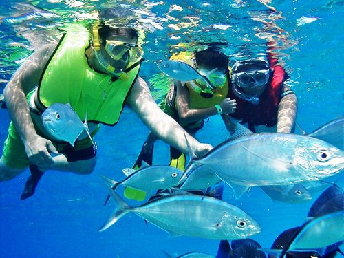 Cozumel SNUBA Trip Reservations Cost