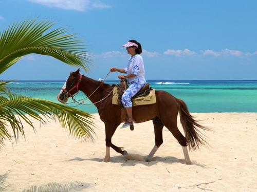 Cozumel Use Of Beach Facilities Cruise Excursion Reservations Horseback Riding