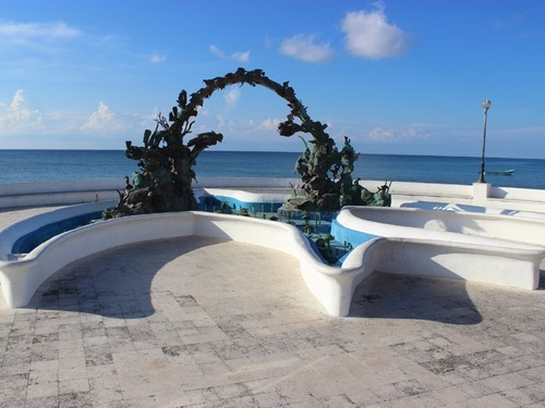 Cozumel  Excursion Reviews
