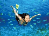 Cozumel Swimming  Excursions